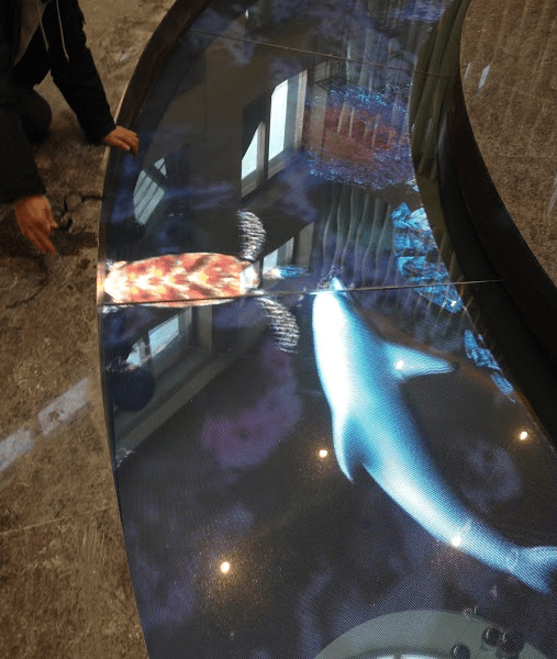 Zoom Floor Transparent LED curved fish