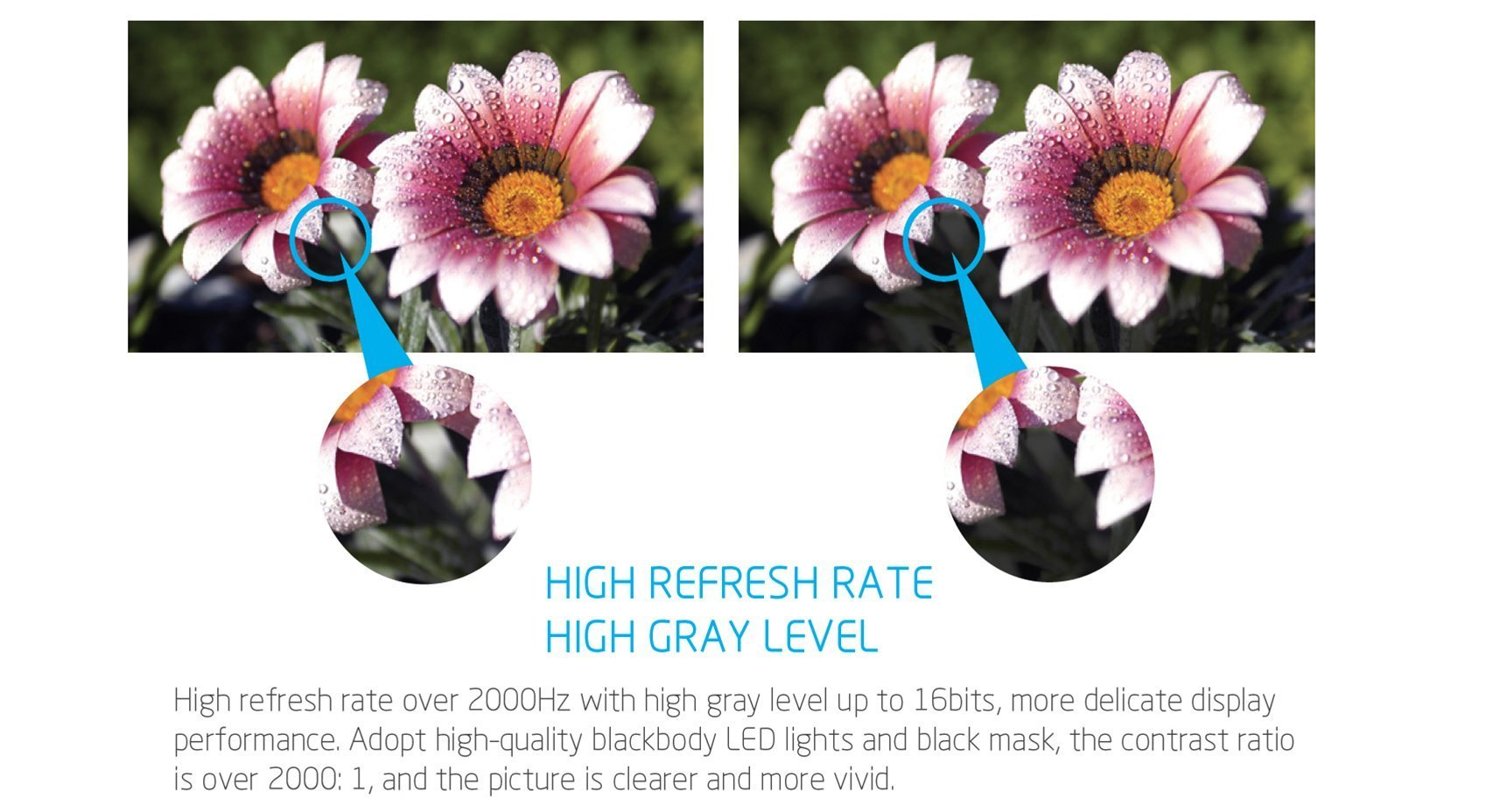 LED Rentals Flexible Bendable Curtain LED Event flower