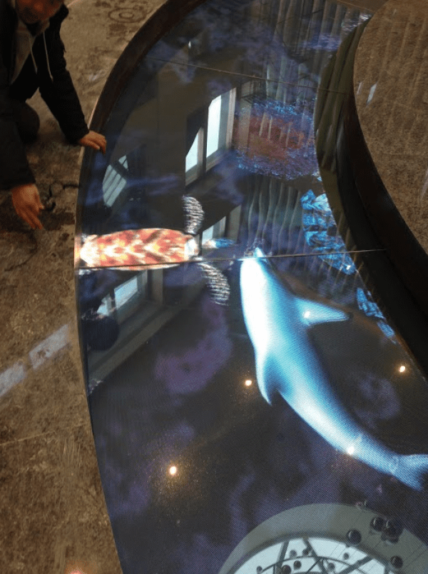 aquarium LED floor display