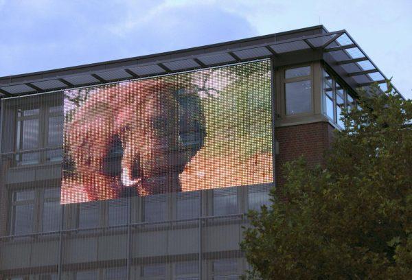 Сетка газа прозрачный светодиодные полосы фасад отображения слон