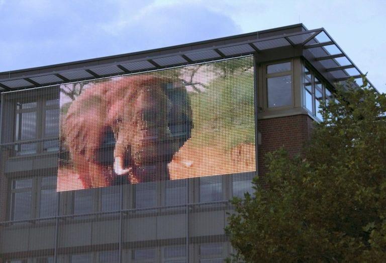 mesh strip transparent LED strip facade display elephant