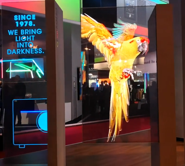 Display OLED bird