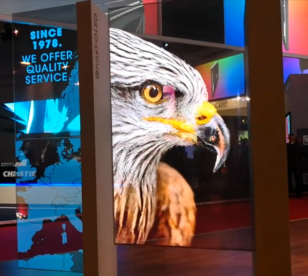 Display OLED eagle