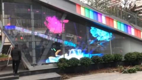 Flower transparent LED