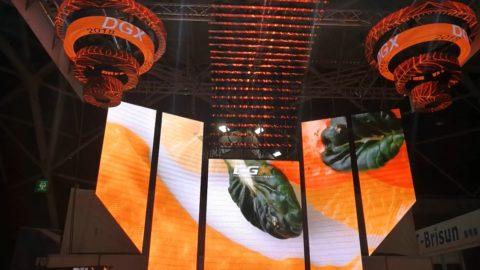 DGX LED screen display orange