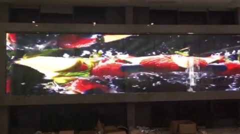 Fully transparent screen LED display fruits