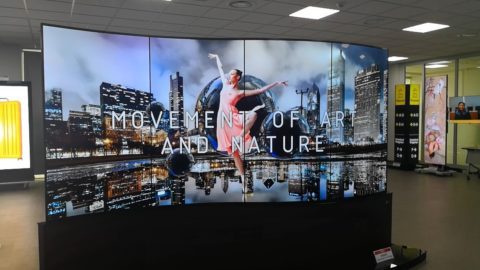 Curved OLED flexible screen display dancer