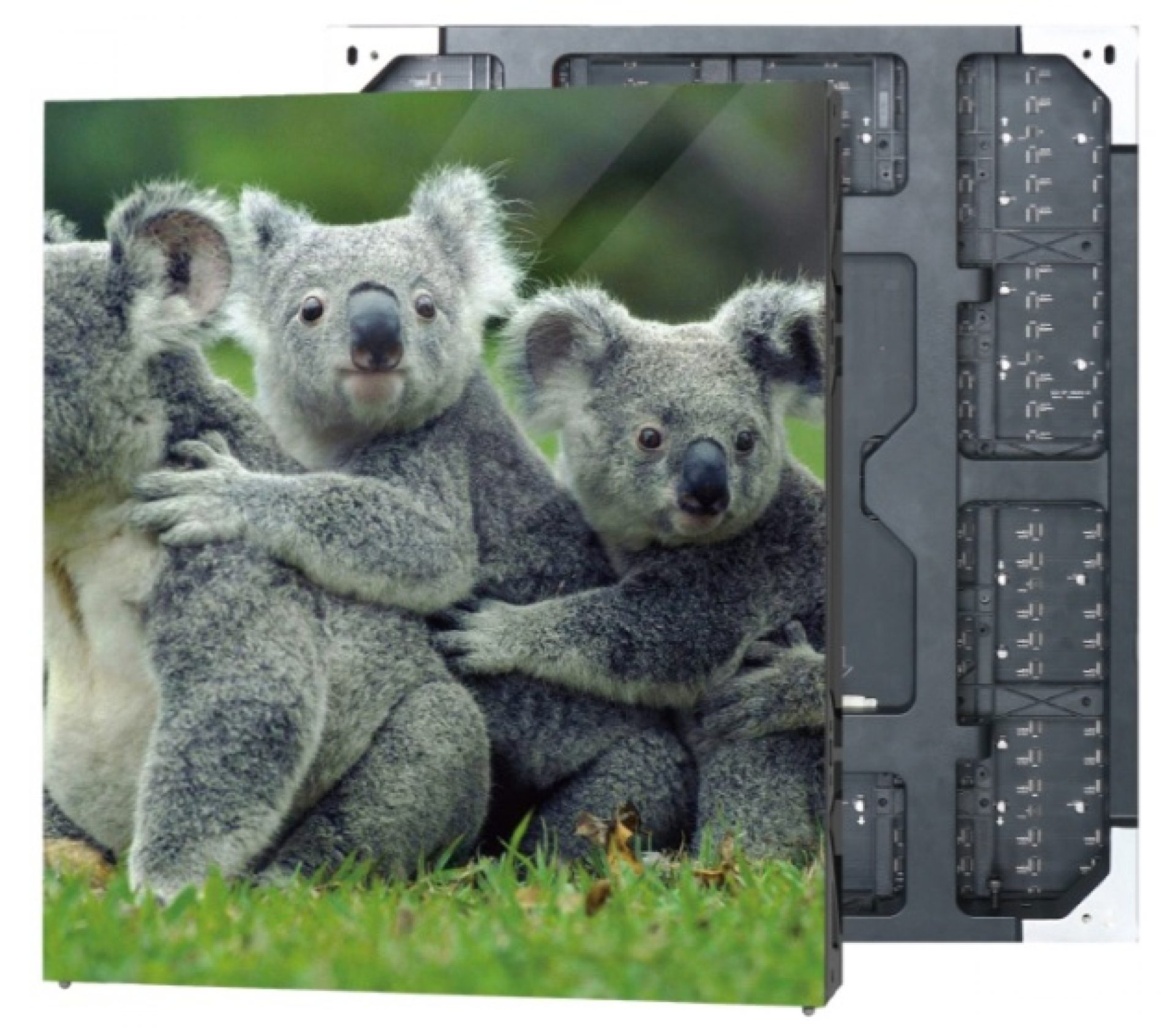 Economical LED display Solutions by Street Communication – The Koala
