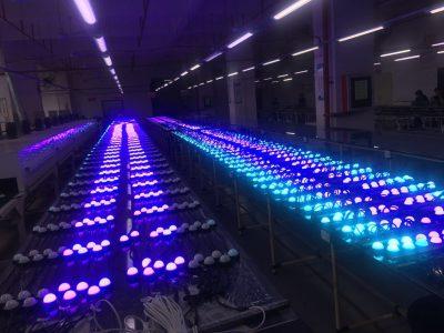 Test led lamps mesh TD garden Boston