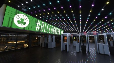 Flexible LED-for-td-garden-7